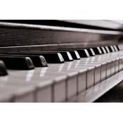 Keyboard, Piano, dan Organ