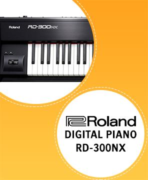 RD-300NX